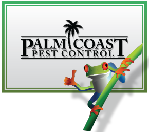 Pest Control Jupiter | Termite Control Florida | Lawn Care 33469 – Palm Coast Pest Control