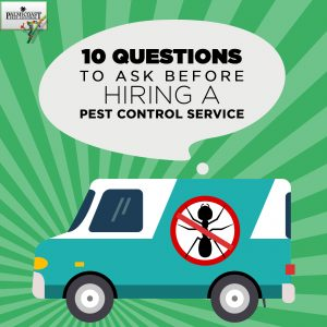 10 Questions To Ask Before Hiring A Pest Control Service